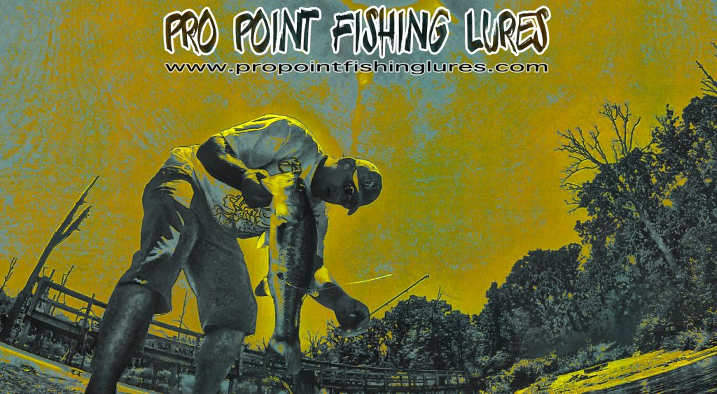 The Bass Connection with Pro Point Fishing Lures