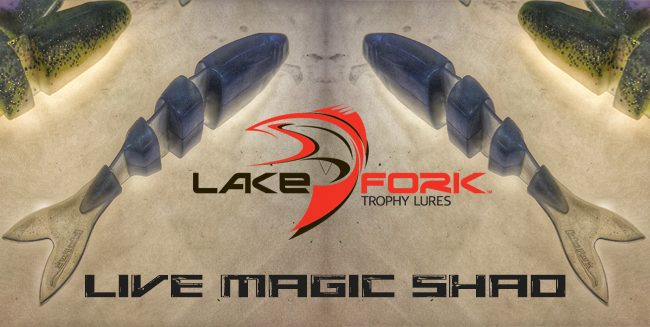 lake-fork-tackle-live-magic-shad-website-banner