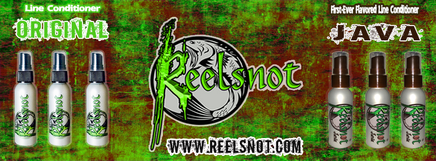 reelsnot-jan-banner-java-original-1