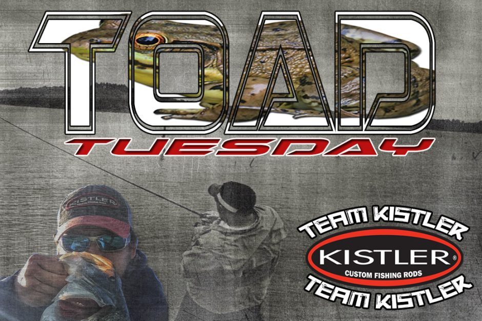 toad-tuesday-kistler