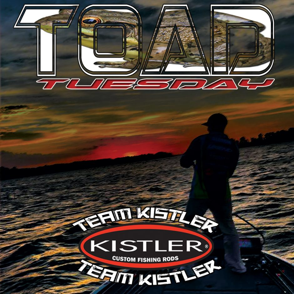 toad-tuesday-official-weekly-graphic-team-kistler